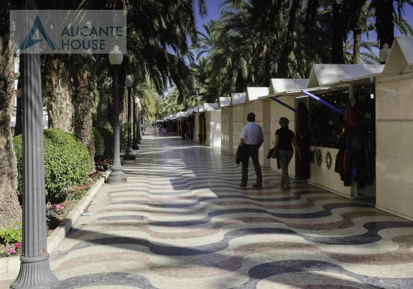 Promenade along the Esplanade de Alicante