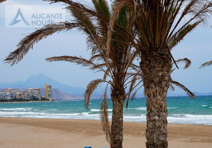 the beaches of the Costa Blanca