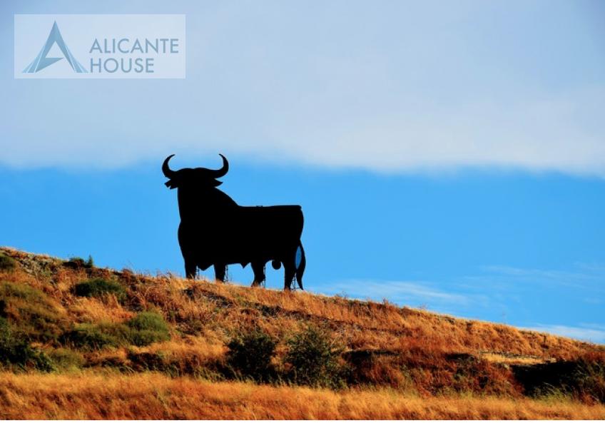 Что нужно знать при покупке недвижимости в Испании?