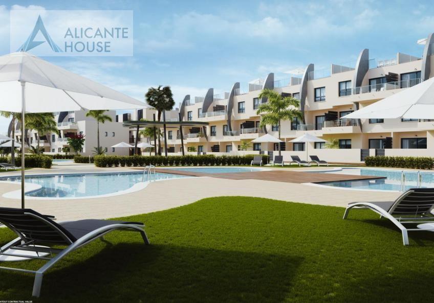 Urbanization with swimming pool