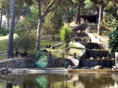 Park in Guardamar del Segura
